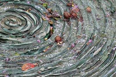 Dallas Arboretum Photograph - Water Spiral  by Douglas Barnard