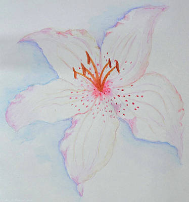 Painting - Watercolor Lily by Debbie Portwood