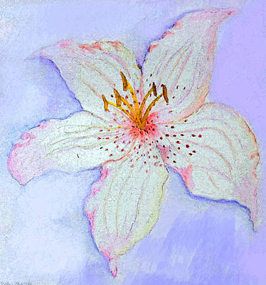 Digital Art - Watercolor Lily Photoart by Debbie Portwood
