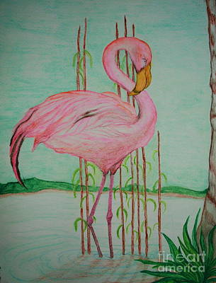 Painting - Watercolor Pencil Flamingo by Christina A Pacillo
