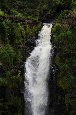 Owls - Waterfall 1 by Jennifer Bright