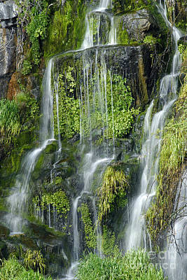 Photograph - Waterfall At Columbia River Washington by Ted J Clutter and Photo Researchers