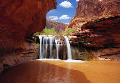Photograph - Waterfall In Coyote Gulch Utah by Douglas Pulsipher