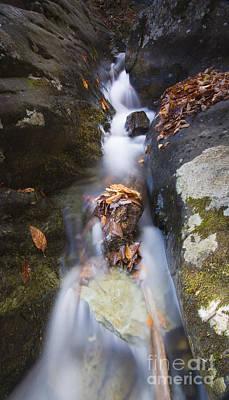 Waterfall In Shenandoah National Park Art Print by Dustin K Ryan