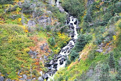 Photograph - Waterfall In Skagway by Pamela Walrath