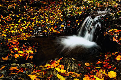 Waterfall Art Print by Irinel Cirlanaru