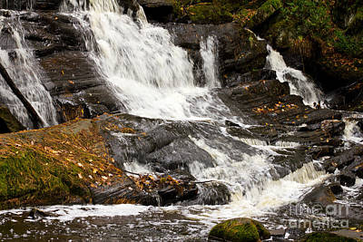 Photograph - Waterfall by Les Palenik