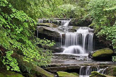 Waterfall Near Mabbitt Spring Art Print