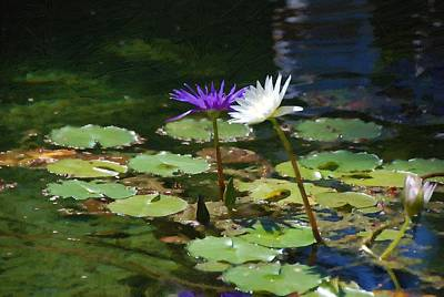 Digital Art - Waterlilies 1 by Fran Woods
