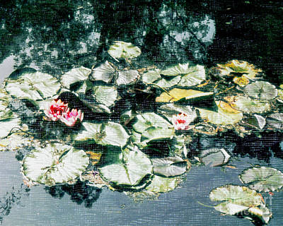 Photograph - Waterlilies At Giverny by Patricia Januszkiewicz