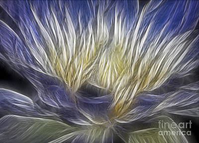 Digital Art - Waterlily Expressionism by Susan Candelario