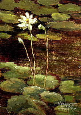 Painting - Waterlily  by Vic  Mastis
