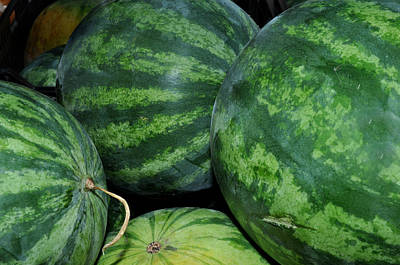 Art Print featuring the photograph Watermelon by Diane Lent