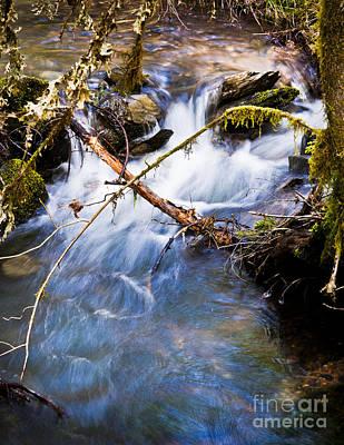 Photograph - Waters Creek - Spring 2011 by Jim Adams
