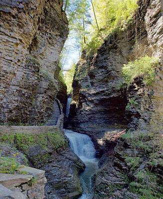 Photograph - Watkins Glen Spring One by Joshua House