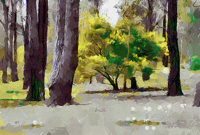 Digital Art - Wattle Among The Gums by Fran Woods