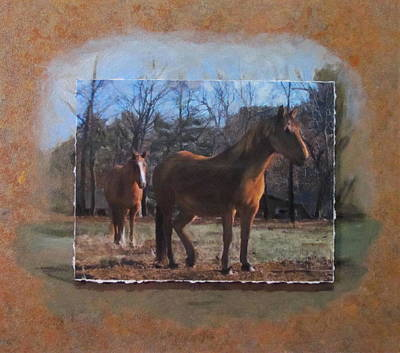 Mixed Media - Wautoma Horses by Anita Burgermeister