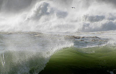 Art Print featuring the photograph Wave by Barbara Walsh
