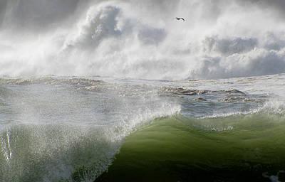 Wave Art Print by Barbara Walsh