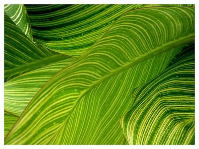Waves Of Green And Yellow Art Print