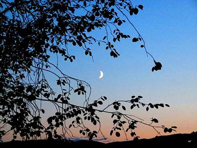 Photograph - Waxing Crescent Moon by Will Borden