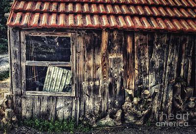 Photograph - Wayside by Jutta Maria Pusl