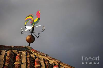 Weather Vane Art Print by Carlos Caetano