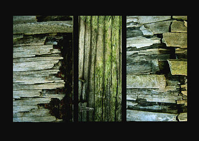 Photograph - Weathered by Ann Powell