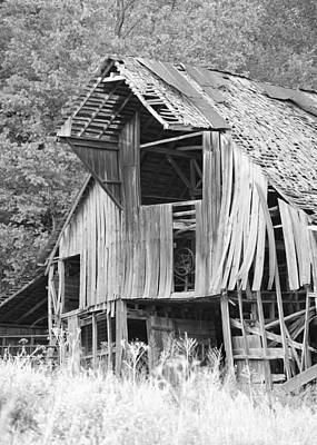 Photograph - Weathered Barn - Black And White by Harold Rau