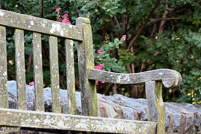 Weathered Bench Art Print