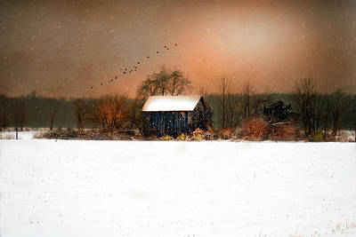 Art Print featuring the photograph Weathered by Mary Timman
