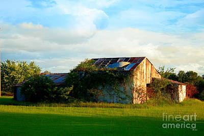 Photograph - Weathered Old Barn by Ms Judi
