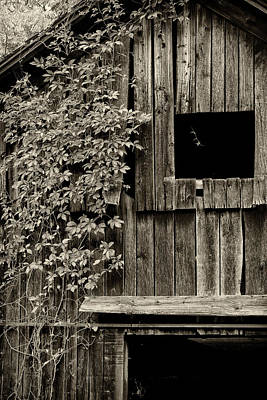 Photograph - Weathered by Sara Hudock