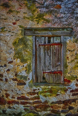 Photograph - Weathered Vibrancy by Susan Candelario