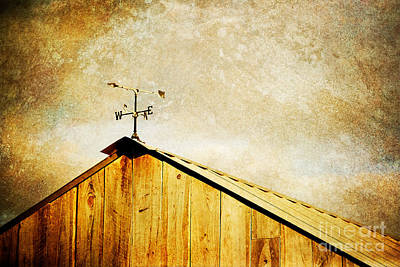 Weathervane Art Print by Joan McCool