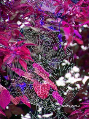 Manipulation Photograph - Web In Fall  by EricaMaxine  Price