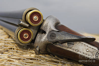Photograph - Webley And Scott - D002721 by Daniel Dempster
