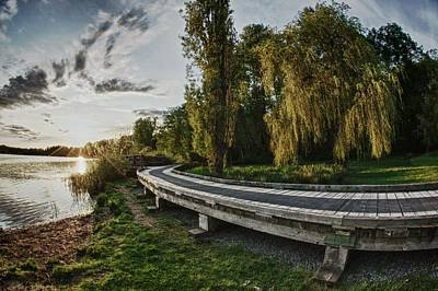 Art Print featuring the photograph Weeping Willow Boardwalk by Scott Holmes