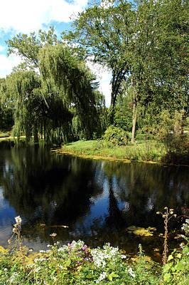 Photograph - Weeping Willow by LeeAnn McLaneGoetz McLaneGoetzStudioLLCcom