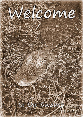 Sign In Florida Photograph - Welcome To The Swamp - Sepia by Carol Groenen