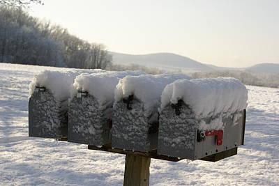 Welcomed Mail Art Print by Margaret Steinmeyer