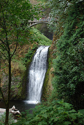 Photograph - Well Placed Waterfall by Eric Tressler