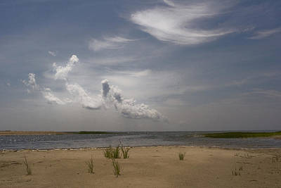 Photograph - Wellfleet Shore by Michael Friedman
