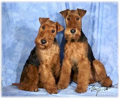 Pup Digital Art - Welsh Terrier Pups by Maxine Bochnia