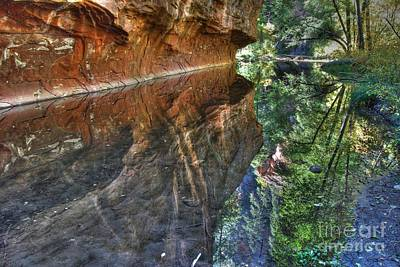 Art Print featuring the photograph West Fork Reflection by Tam Ryan