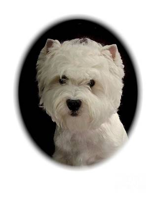 Westie Digital Art - West Highland Terrier 173 by Larry Matthews