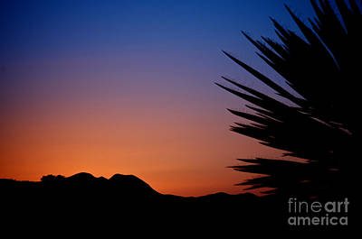 Photograph - West Texas Sunset by Sherry Davis