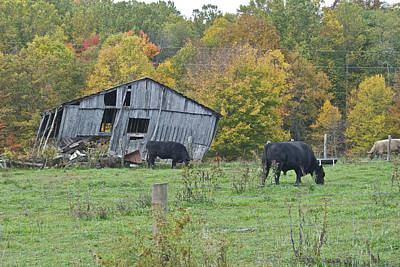 Virginia Ruins Photograph - West Virginia Barn 3214 by Michael Peychich