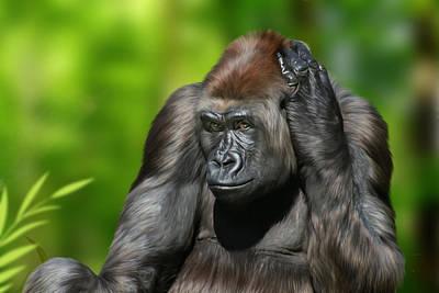 Gorilla Digital Art - Western Lowland by Julie L Hoddinott