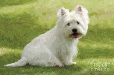 Westie Puppy Digital Art - Westie Dog by Nitiphol Purnariksha